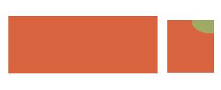鲜网文Logo